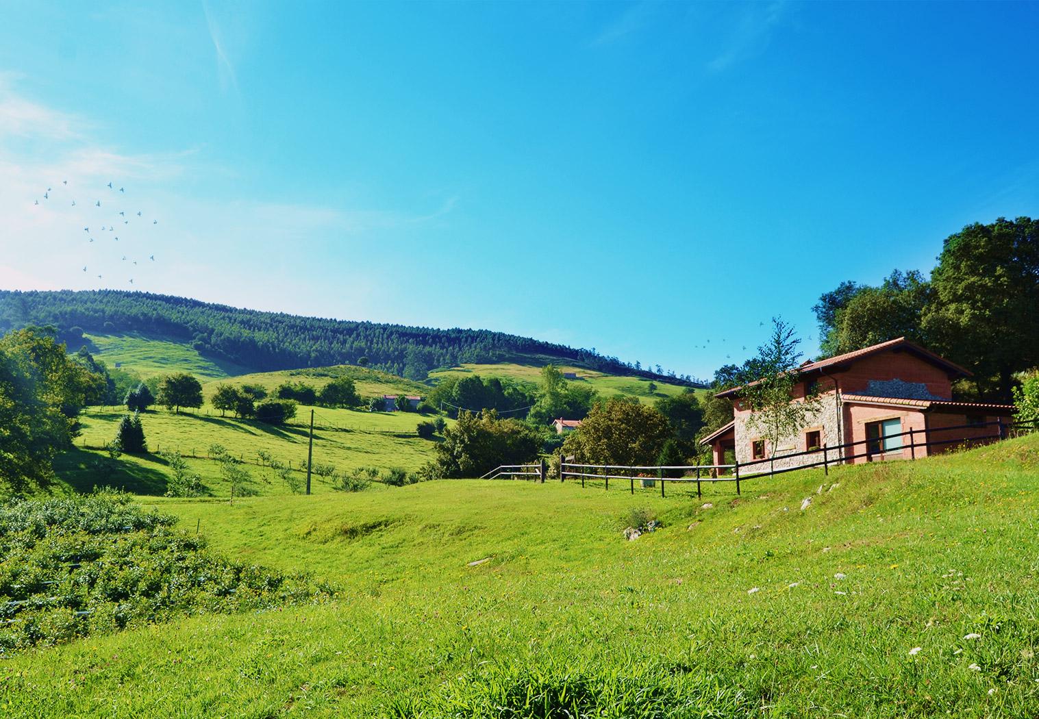 Granja ecológica en el Valle de Machucón