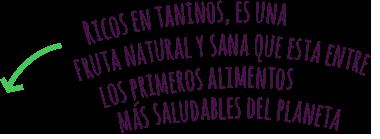 Propiedades del arándano 100% ecológico del Valle de Machucón